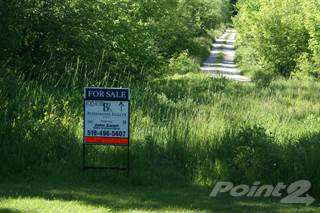 Farm And Agriculture for sale in Lot 17 Concession 14 Road, South Bruce Peninsula, Ontario