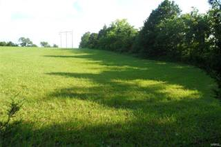 Comm/Ind for sale in 6004 Halter, Farmington, MO, 63640