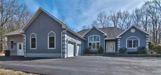 Single Family for sale in 118 Lady Bug Lane, East Stroudsburg, PA, 18301