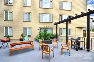 Apartment for rent in Greenlake Terrace Apartments, Seattle, WA, 98115