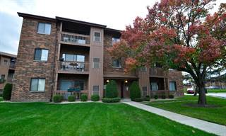 Single Family for rent in 15800 PEGGY Lane 5, Oak Forest, IL, 60452