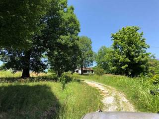 Single Family for sale in 10779 Dawson Road, Princeton, KY, 42445