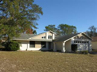 Single Family for sale in 4064 Casino Court, Spring Hill, FL, 34606
