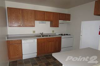 Apartment for rent in The Birches Apartments - 2 Bed Downy Birch, Joliet, IL, 60435
