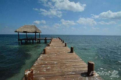 Commercial for sale in Land for sale, Puerto Morelos, Puerto Morelos, Quintana Roo