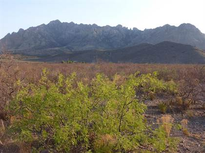 Lots And Land for sale in 6.75 ac S Acacia Lane 3D, Portal, AZ, 85632