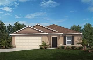 Single Family for sale in 14219 SERANOA DRIVE, Meadow Woods, FL, 32824