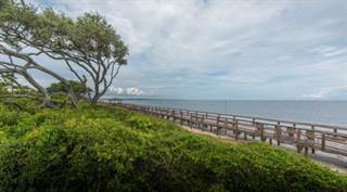 Jekyll Island, GA Condos For Sale: from $125,000   Point2 Homes