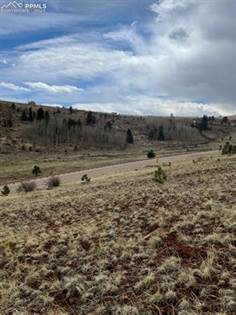 Lots And Land for sale in 2117 County Road 1 Road, Cripple Creek, CO, 80813