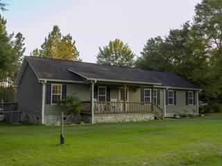 Single Family for sale in 875 County Line Rd, Mt. Vernon, GA, 30445