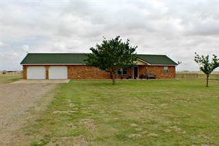 Single Family for sale in 275 FM 2575, Panhandle, TX