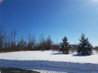 Land for sale in VL DURANT, Howell, MI, 48843