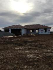 Single Family for sale in 8835 Lawrence 2220, Greater Pierce City, MO, 65708