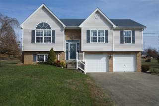 Single Family for sale in 616 Poplar Trace, Tunnel Hill, KY, 42701