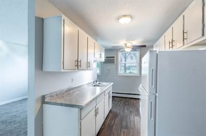Apartment for rent in 2455 2nd St. N, North St. Paul, MN, 55109