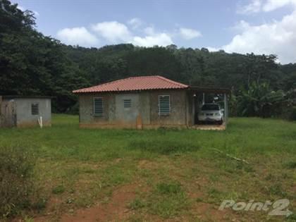 Residential Property for sale in Bo. Rio Prieto, Lares PR, Rio Prieto, PR, 00669