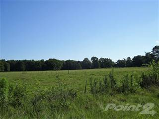 Farm And Agriculture for sale in 912 HWY 234, Ashdown, AR, 71822