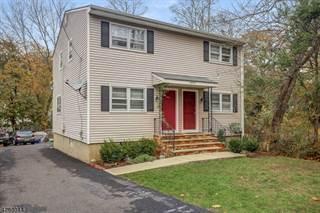 Multi-family Home for sale in 18 Bodnar St, Bernardsville, NJ, 07924