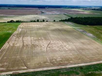 Farm And Agriculture for sale in TBD Dove, Cotton Plant, AR, 72036