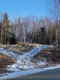 Lots And Land for sale in 2685 Megans Circle, Wasilla, AK, 99654