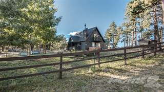 Single Family for sale in 17 Fawn Road , Bailey, CO, 80421
