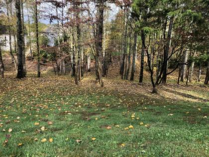 Lots And Land for sale in 216 Tecumseh Way, Loudon, TN, 37774