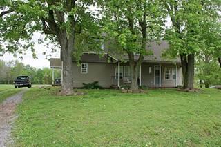 Single Family for sale in 704 Mt Mission Road, Metropolis, IL, 62960