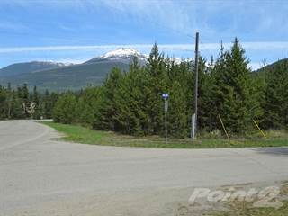 Comm/Ind for sale in 1285 1st Avenue, Valemount, British Columbia, V0E2Z0