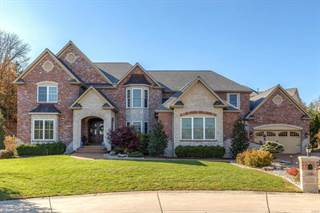 2426 Christopher View Drive, Oakville, MO