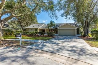 Single Family for sale in 3398 LANDING COURT, Palm Harbor, FL, 34684