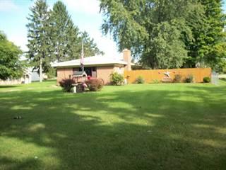 Single Family for sale in 3474 Shiawassee, Fenton, MI, 48430