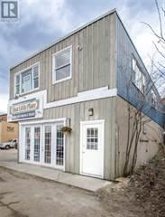 Retail Property for rent in 72 MAIN STREET E, Huntsville, Ontario