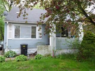 Single Family for sale in 17275 BRAILE Street, Detroit, MI, 48219