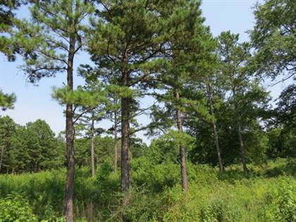 Lots And Land for sale in 126 Wild Flower Place, Dover, AR, 72837
