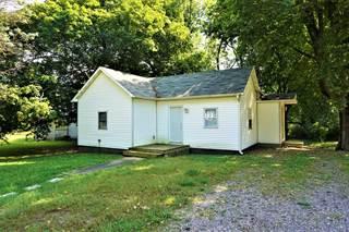 Single Family for sale in 308 East Harrison Street, Saybrook, IL, 61770