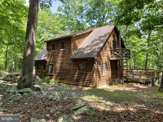 Single Family for sale in 29 WATERLINE DRIVE, Upper Tract, WV, 26866