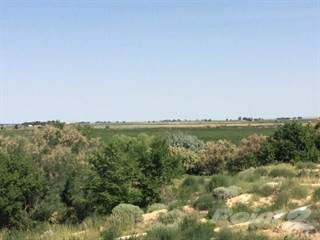 Farm And Agriculture for sale in 13764 CR HH, Las Animas, CO, 81054