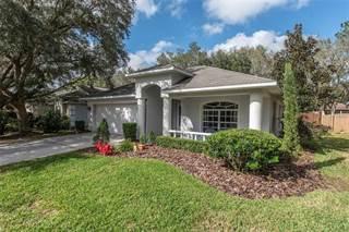 Single Family for sale in 3013 BEAVER POND TRAIL, Valrico, FL, 33596