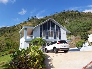 Residential Property for sale in Barranquitas - Cañabon, Barranquitas, PR, 00794