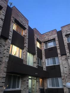 Residential Property for rent in 8651 West Foster Avenue 3B, Chicago, IL, 60656