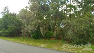 Land for sale in 11132 Belltower St, Spring Hill, FL 34608, Spring Hill, FL, 34608