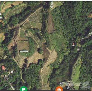 Farm And Agriculture for sale in Barranquitas, Barranquitas 00794, Barranquitas, PR, 00794