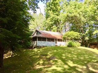 Lake Luzerne, NY Real Estate & Homes for Sale: from $43,000