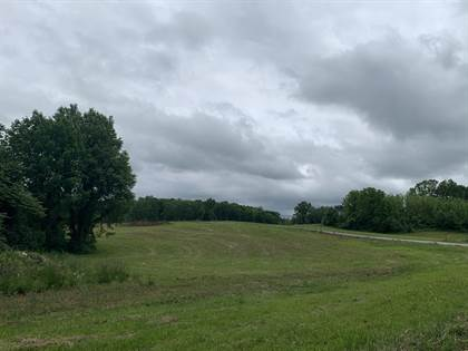 Lots And Land for sale in 31 Boaters Alley, Jabez, KY, 42544