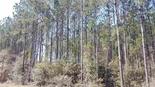 Land for sale in 00000 SOUTHRIDGE RD, Milton, FL, 32570