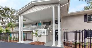 Apartment for rent in Fountain Court & Lakeside Apartments - B1 - Oak Lake, St. Petersburg, FL, 33713