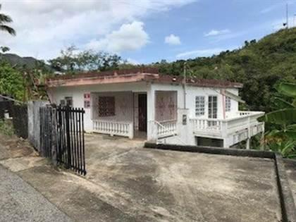 Residential Property for sale in 19 COM. IRIZARRY #19 CALLE 1, Adjuntas, PR, 00601