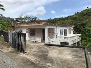 Single Family for sale in 19 COM. IRIZARRY #19 CALLE 1, Adjuntas, PR, 00601