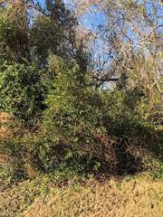 Land for sale in 312 Sturgeon Lane, Virginia Beach, VA, 23456