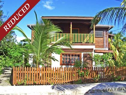 Commercial for sale in Beautiful Sea View 2-Storey in the Heart of the Placencia Village, Placencia, Stann Creek